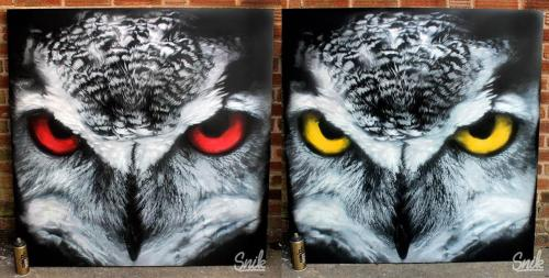 owl canvas