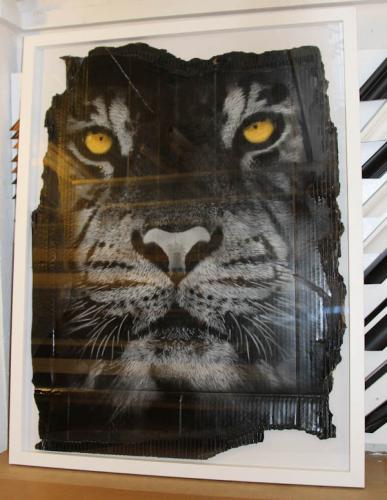 snik tiger
